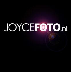 Joyce de Vries